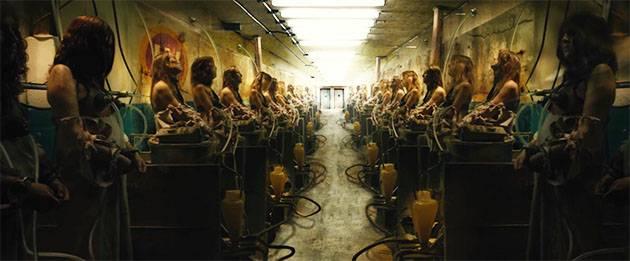 รีวิว หนังเรื่องThe Herd : ฟาร์มผู้หญิง